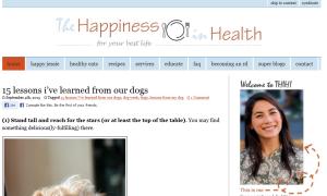 THiH Homepage Screenshot
